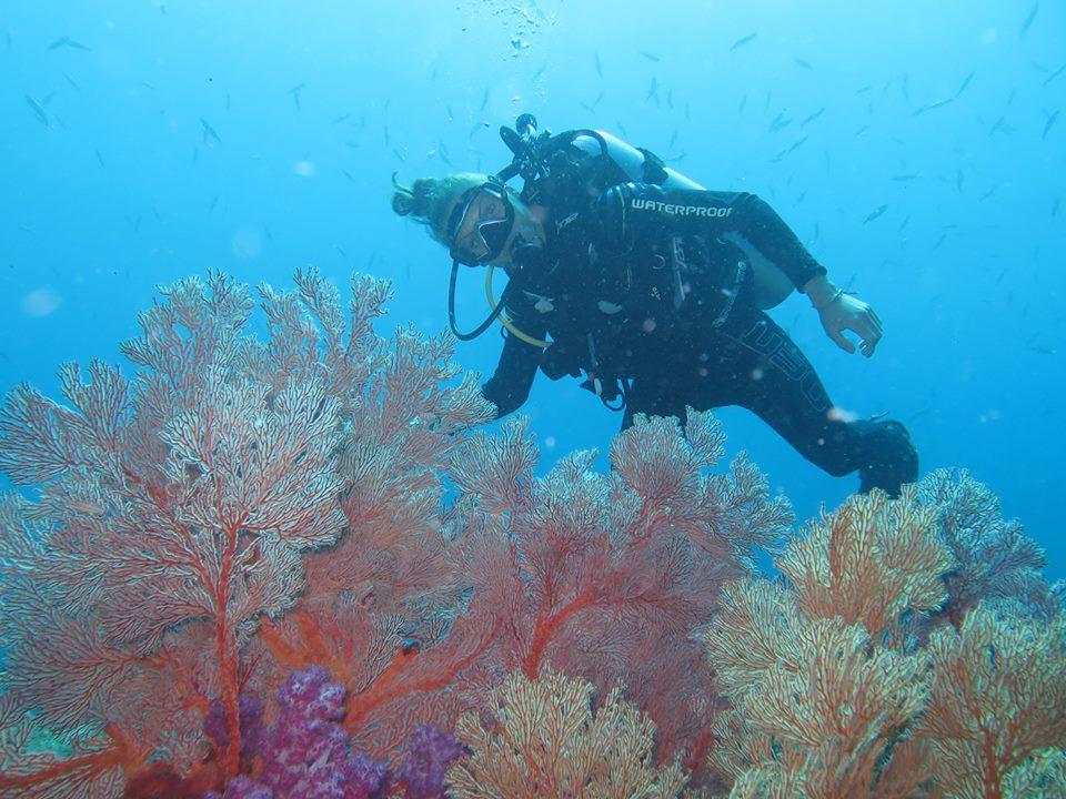 diving thailand_1 (4)