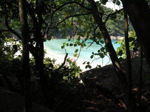 diving thailand_54